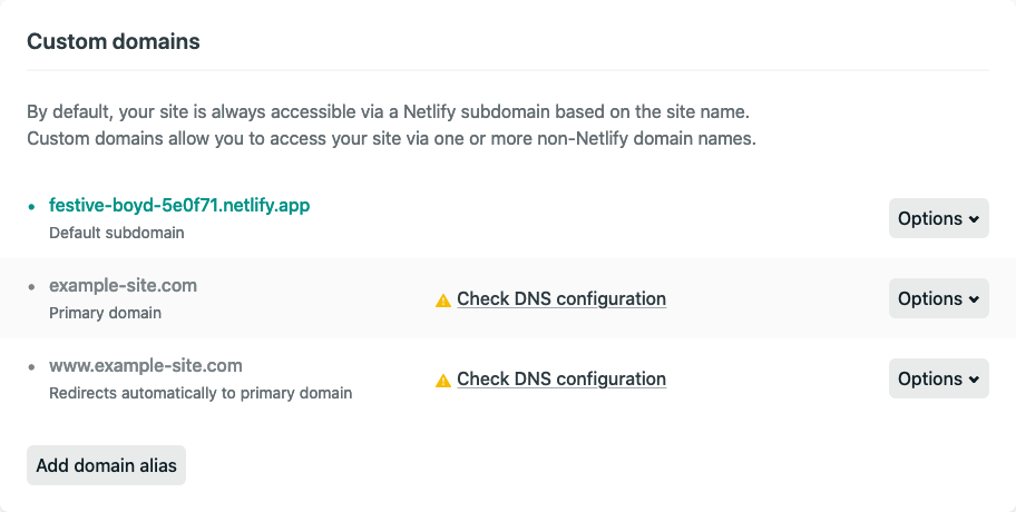 Netlify's DNS settings